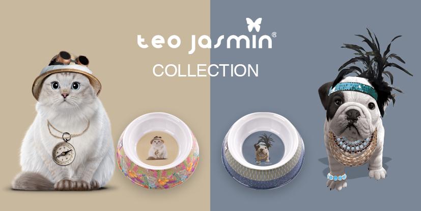 collection teo jasmin pour votre chien et votre chat